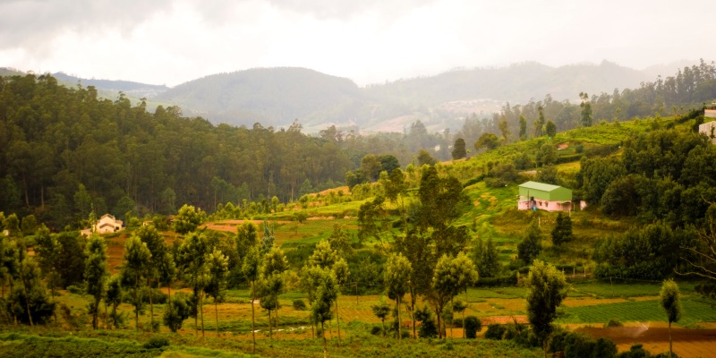 Holiday destinations in Ooty for peace lovers